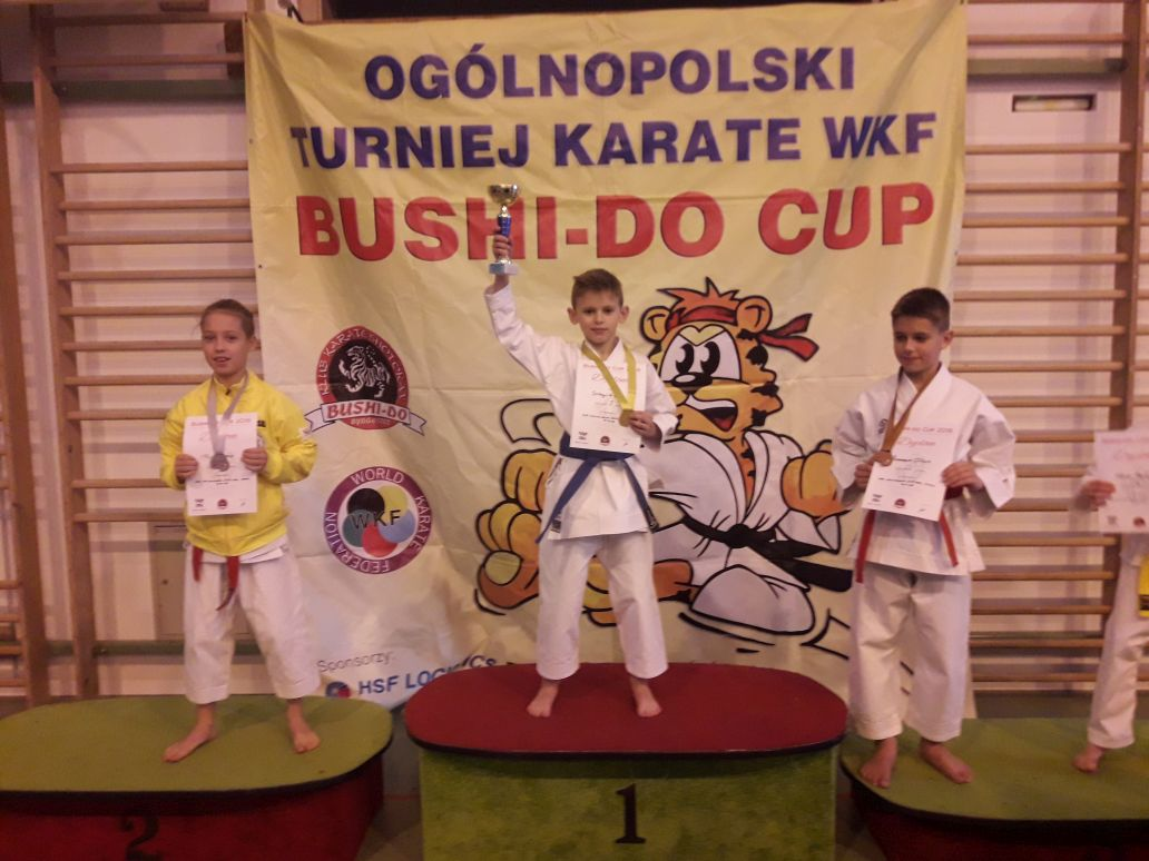 Karate BUSHI-DO CUP 2018 - Obrazek 4