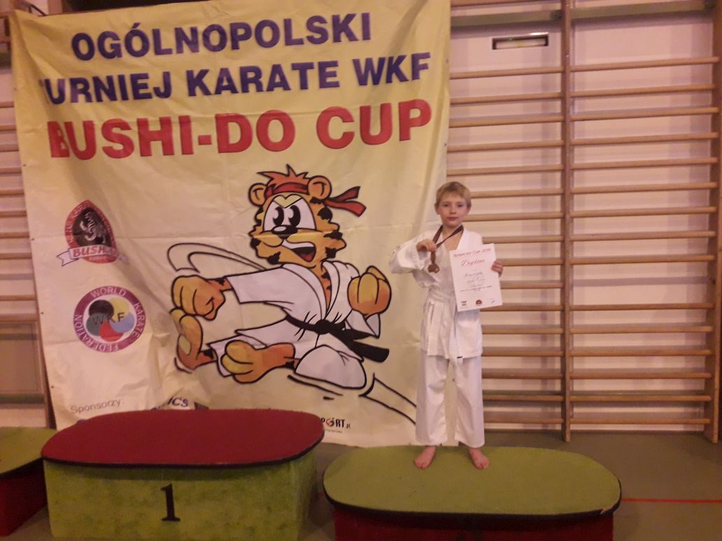 Karate BUSHI-DO CUP 2018 - Obrazek 3